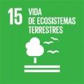 15 Vida de ecosistemas terrestres